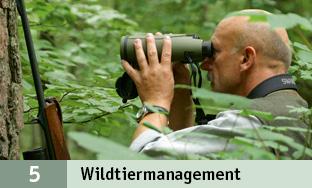 5_Management